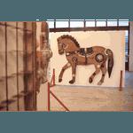 Painel Talha de Cavalo