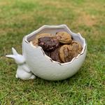 Ovo One Bunny com 20 cookies