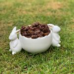 Ovo Bunny com crocante de cookies c/ cobertura de chocolate