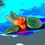 Porta guardanapo orange