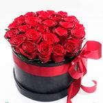 Box Esplendor 25 Rosas maravilhoso