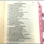 Bíblia Ave Maria - Rosa com Alça -Bolso
