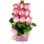 Triplo de Rosas