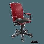 Cadeira Ergoplax +