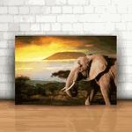 Placa Decorativa - Elefante
