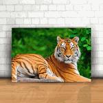 Placa Decorativa - Tigre
