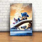 Placa Decorativa - Sonic Mod. 05