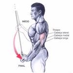 Puxador Curvo Curto Com Giro 50 Cm Musculação Academia