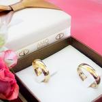 Par de Alianças de Casamento Bristol em Ouro 18k Com Diamante