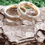 Par de Alianças de Bodas Bamberg em Ouro Bicolor 18k E Diamantes