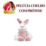 Coelho Pelúcia com Prótese Inclusa (porta produtos)