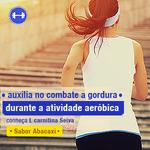 L Carnitina 3,0g/20ml Abacaxi 500ml