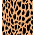 Leopard Print - Biquini Ripple Amarração