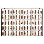 Painel Grade de Corpos com 75 pçs