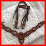 Conjunto Cabecada e Peiteira - Master Saddles 44