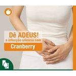 Cranberry Extrato Seco 500mg 60 cápsulas