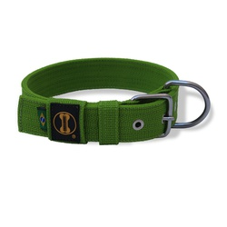Coleira Para Cachorro Fit Verde Claro - VD01 - AMOROSSO