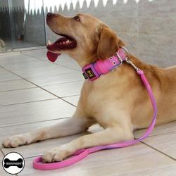 Coleira Para Cachorro Amorosso + Super Guia Curta ... - AMOROSSO
