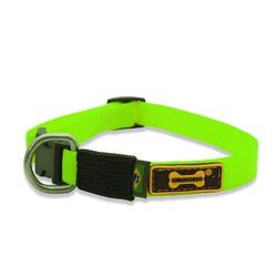 Little Collar (Coleira Pequena) Verde Abacate - LI... - AMOROSSO