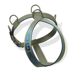 Peitoral Para Cachorro Personalizado Cinza e Azul ... - AMOROSSO