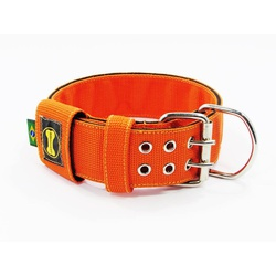 Coleira Para Cachorro Amorosso (laranja e preto) ... - AMOROSSO