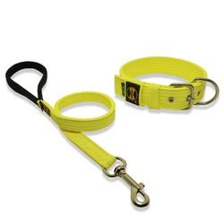 Coleira Para Cachorro Fit + Guia / Amarelo Flúor -... - AMOROSSO