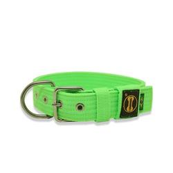 Coleira Para Cachorro Fit (Verde Flúor) - FTVF01 - AMOROSSO