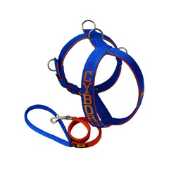 Peitoral Amorosso® Personalizado (azul e laranja) ... - AMOROSSO