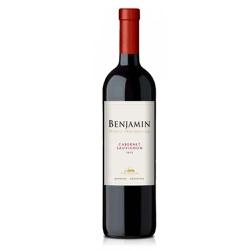 Vinho Benjamin Nieto Tinto Seco 750ml - Benjamin N... - BEBFESTA