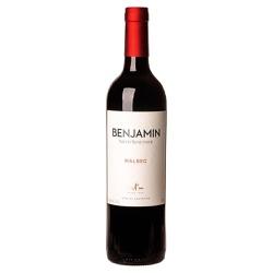 Vinho Benjamin Nieto Tinto Seco 750ml - Vinho Ben... - BEBFESTA