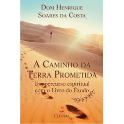 Livro : A Caminho Da Terra Prometida - Dom Henriqu... - Betânia Loja Católica