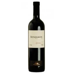 Vinho Argentino Benjamin - FLORABARIGUI
