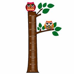 Régua de Crescimento 1,5m - Coruja - Casa Anzai