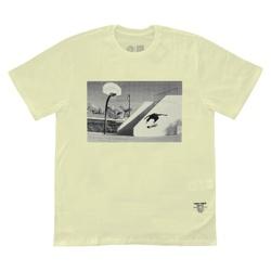 Camiseta DC Shoes Tiago Lemos HellFlip Snow - 2518 - DREAMSSKATESHOP