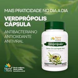 Própolis em Cápsula Sem Álcool VerdPrópolis 125mg ... - Fauna e Flora l Sua Loja Online de Produtos Naturais