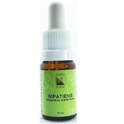 Impatiens Essência 10ml - 17677 - Fitoflora Produtos Naturais