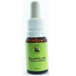 Millefolium Essência 10ml - 17680 - Fitoflora Produtos Naturais