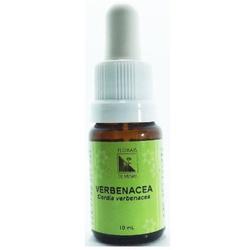 Verbenacea Essência 10ml - 17687 - Fitoflora Produtos Naturais