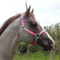 Cabresto para Cavalo Nylon Estampado Boots Horse 3901