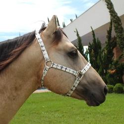 Cabresto para Cavalo Nylon Estampado Boots Horse 3905