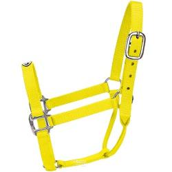 Cabresto para Cavalo Nylon Amarelo Boots Horse