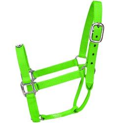 Cabresto para Cavalo Nylon Verde Limão Boots Horse