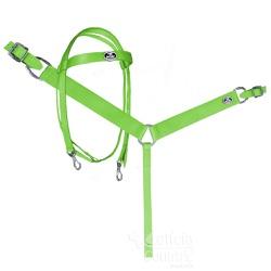 Conjunto Cabeçada e Peiteira Boots Horse Verde Limão