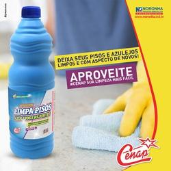 Limpa Pisos e Azulejos Cenap 1l Loja - 20 - NORONHA PRODUTOS QUÍMICOS