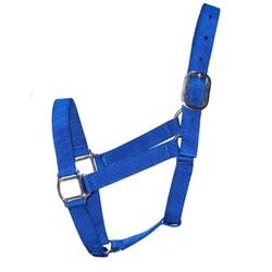 Cabresto de Nylon MReis - Azul Royal - 13052 - PROTEC HORSE - A LOJA DOS GRANDES CAMPEÕES