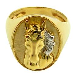Anel Masculino de Cavalo em Ouro 18K Oval - J06103... - RDJ JÓIAS