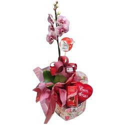 Orquídea Phalaenopsis para presente com coração de pelúcia e lindt lindor