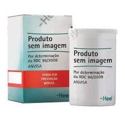 Traumeel 50comprimidos Heel - Seiva Manipulação | Produtos Naturais e Medicamentos