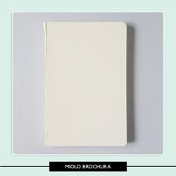 Miolo Brochura 13 5 x 20 5 cm - 7E51A0 - Studio Office K