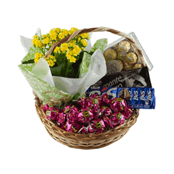Cestas de Chocolate Jardim Colonial - 5003 - Bellas Cestas Online Salvador